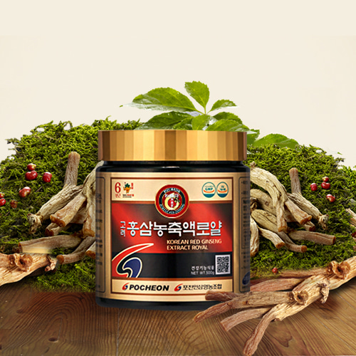 Korean Red Ginseng Concentrate Royal 500g